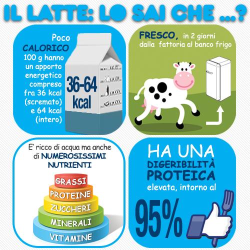 infografica14_05